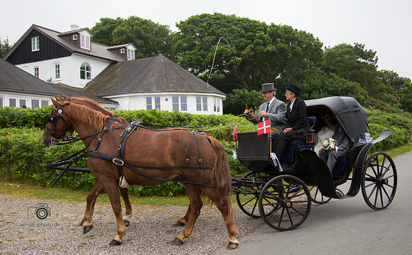 Wedding yesterday in Strandskoven, that looks like a mansion, on the island Ærø
